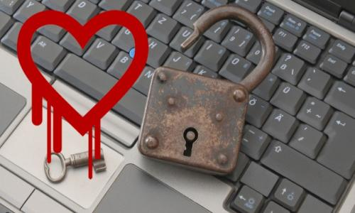 The Heartbleed Bug, Your Risk, and Online Banking